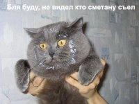 Тт Тт, Москва, id33923870