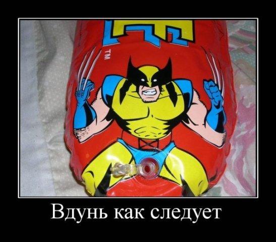 http://cs1693.vkontakte.ru/u12425610/96359718/x_299ad0e8.jpg