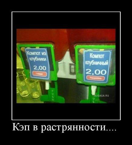 http://cs1693.vkontakte.ru/u12425610/96359718/x_5e34ca43.jpg