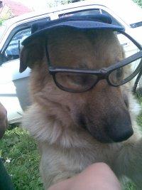 Рудольф-Пёс Рыжов