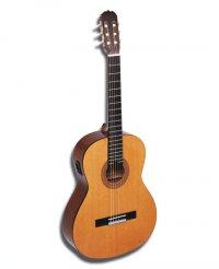 мне купили гитару.
