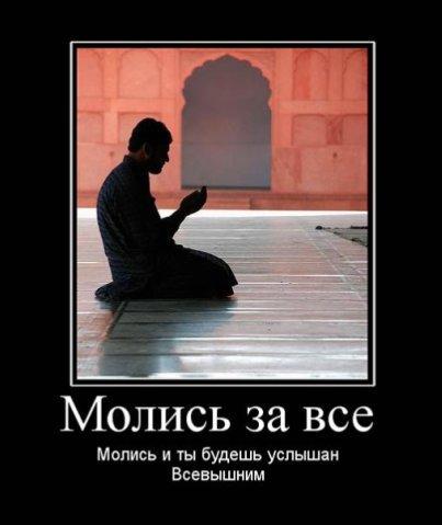 http://cs1777.vkontakte.ru/u29320686/99514241/x_232392d0.jpg
