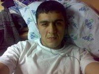 Vahid Mamedov, Карши