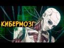 Звездный Капитан Кибермозг из аниме Призрак в Доспехах Ghost in the Shell (виды киберизации, взлом, заболевания)