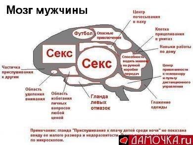 Сергей Майоров |