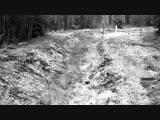 ❗️Стая Волков уходит с Литвы в Беларусь❗️