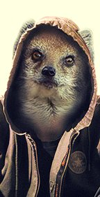 Иллюстратор Mongoose