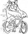 """ТК """"СОВА"""" - Велосипедный и пешеходный туризм."""