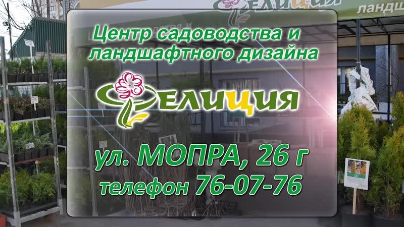 Центр садоводства и ладшафтного дизайна Фелиция г.Киров