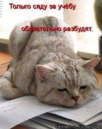 Ксюффка Саяркина, 20 ноября 1964, Сыктывкар, id39465624