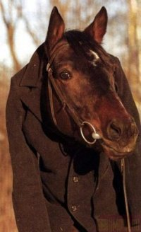 Wins Klark, 24 декабря 1986, Минск, id29446873