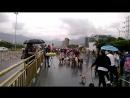 Desfile de los perros en la ciudad de Medellin 2018