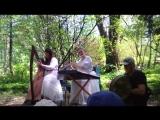 Ирландская музыка в Ботаническом саду