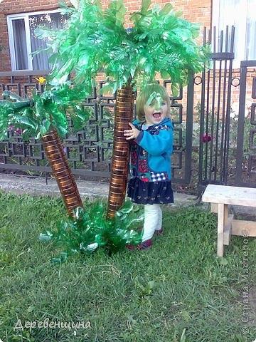 Вот такую красоту можно сотворить из пластиковых бутылок! пальма из ПЭТ бутылок.Автор: Деревенщина. http...