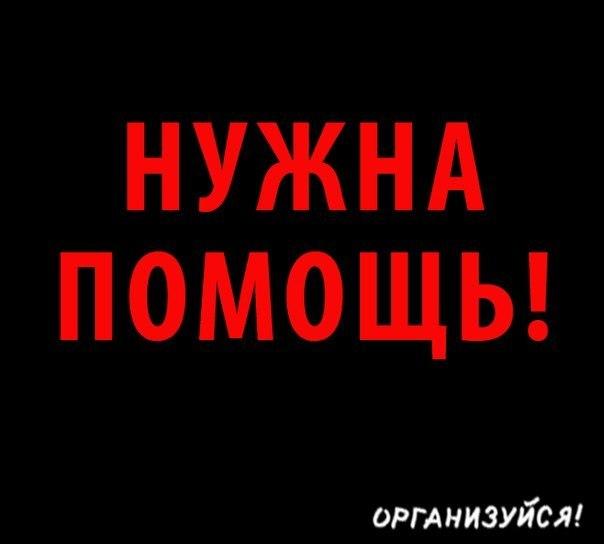 новости шоубизнеса дня в мире и россии сегодня