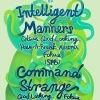 Intelligent Manners (SPb) & Command Strange (KZ) @ BarBQ 11.08