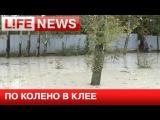 Больше 10 домов залило клеем в результате ЧП на заводе в Новой Москве