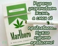 Denis Baharev, 12 марта , Челябинск, id179553097