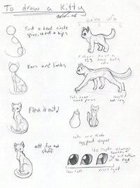 Главное что бы было желание рисовать. а что касается последнего рисунка aka коты-близнецы, хвост чересчур вверх...