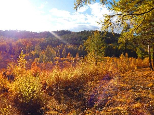 осень в забайкалье фото
