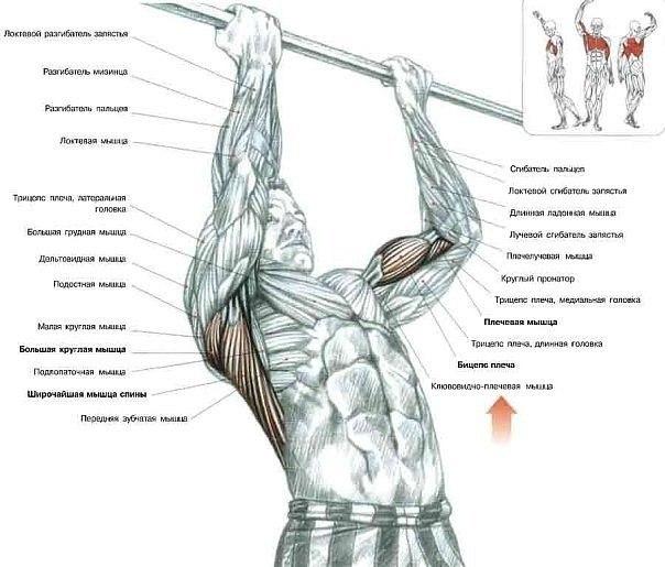 Схемы упражнений