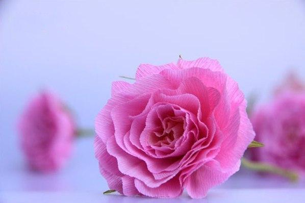 Записи с меткой бумажные розы