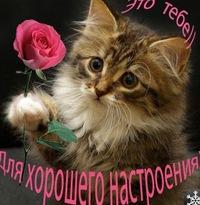 Татьяна Вдовина, 18 января , Архангельск, id187644514