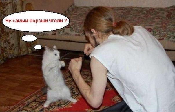 мясорубка приколов | ВКонтакте
