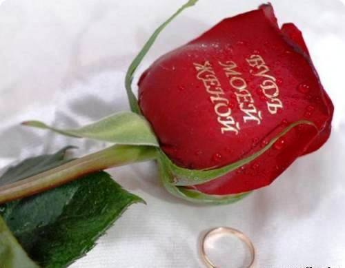 Говорящие розы