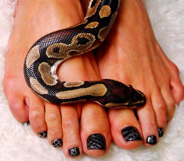 """себе вы сможете на своих ногтях сделать маникюр  """"змеиная кожа """"."""