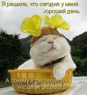 РЕЛАКСАЦИЯ))))) - Страница 5 UY7FT5KcKYE