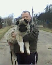 Виктор Мицкевич, 14 мая , Барановичи, id174547770