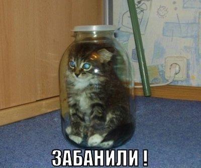 http://cs301413.userapi.com/v301413996/26ad/orL5keUvBhE.jpg