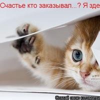 Максим Валявин, 29 января 1985, Бугульма, id163742326