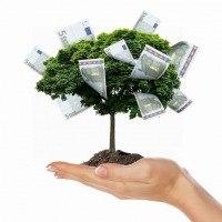 Денежное дерево интернет заработок