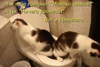 Костя Умнихин, Москва, id159776463