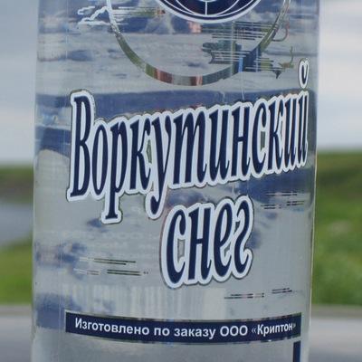 Павел Мирошинский, 12 марта , Сосногорск, id22118014