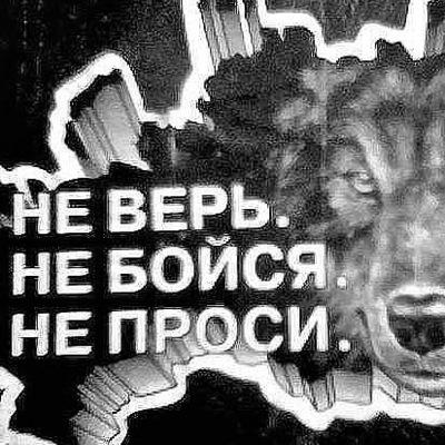 Вова Грибанов, 21 апреля 1995, Тамбов, id71677403