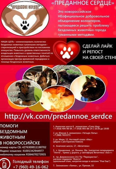 Дарья Варенникова, 20 декабря , Новороссийск, id4826160
