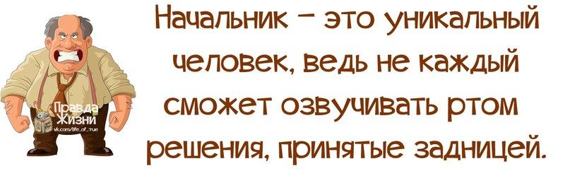 Начальник самодур смешные картинки с надписями, открытки февраля