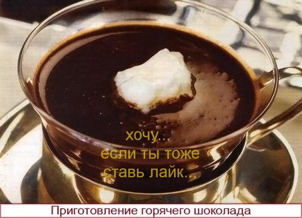 Вкусный рецепт холодца с фото пошагово