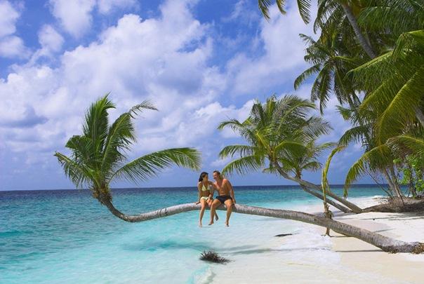 Райское место - островок веселья X_f4e5adb9