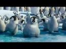 INTENTALO 3BALL MTY VIDEO OFICIAL PINGUINOS