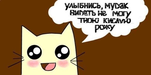 牡 Бугага добро пожаловать в мир няшности! 牡 | ВКонтакте