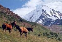 города таджикистана.
