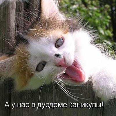 Данил Мамров, 1 сентября , Лиски, id177559125