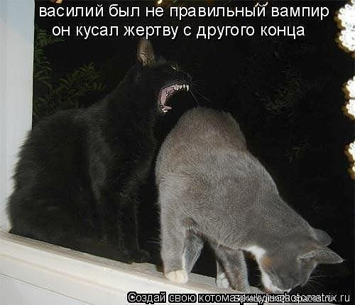 http://cs301712.userapi.com/v301712029/ac11/WFxA9vwh5Tc.jpg