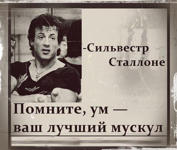 Фразы спортсменов.