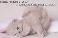 Светлана Мухамадиева, 23 августа , Санкт-Петербург, id173980739
