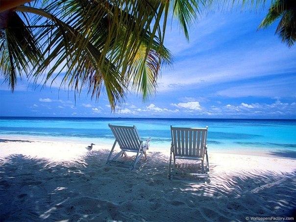 Хочу туда где тепло и влажно ☼